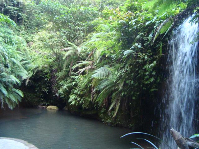 バリ島へ行く。④ ~ヨガと瞑想と私~_f0232060_15593468.jpg