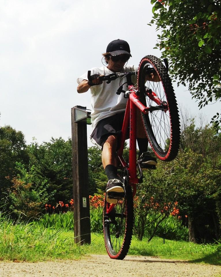 自転車。ギア部ワイヤーの ...