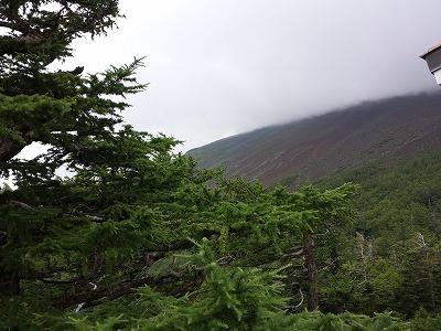 忍野八海と富士山五合目!_e0139694_1927403.jpg