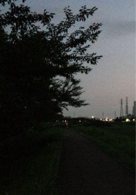 夕方ランニング 67_b0203925_855279.jpg