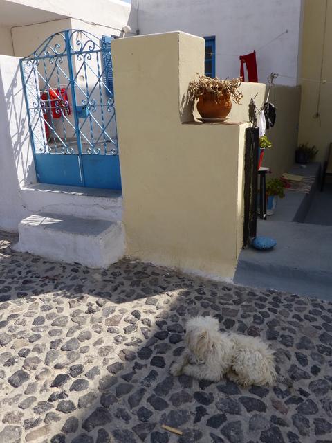 ギリシャ サントリーニ島3日目-2_e0237625_2242255.jpg