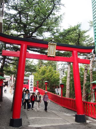 日本滞在記(3)はとバスで富士山五合目と桃狩り☆_d0104926_06341.jpg