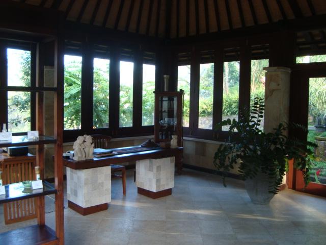 バリ島へ行く。④ ~ヨガと瞑想と私~_f0232060_1795526.jpg