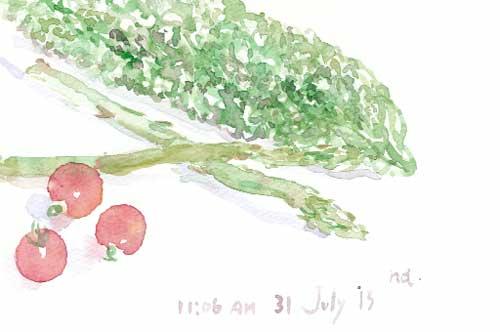 夏を愉しむ 35_d0115092_7151891.jpg