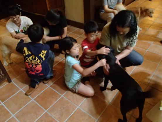 人間も犬も世代交代_f0064906_16171352.jpg