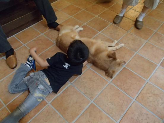 人間も犬も世代交代_f0064906_16173579.jpg