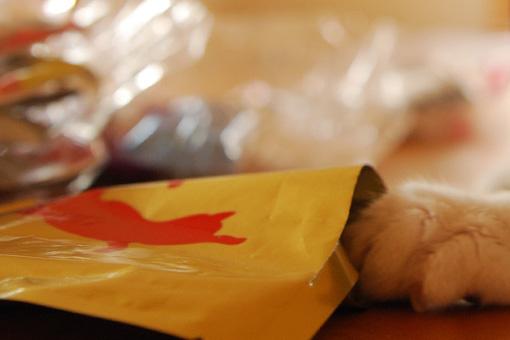 食欲UP!purasuさんからおいしいプレゼント♪_b0259218_1432280.jpg
