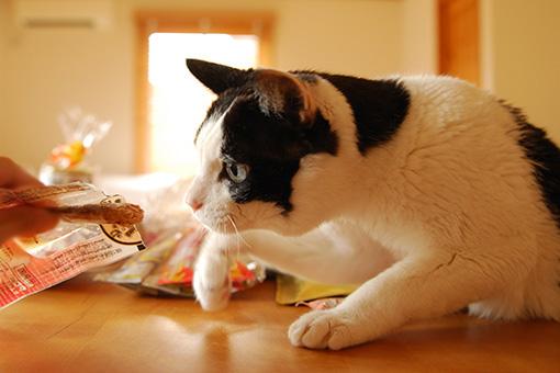 食欲UP!purasuさんからおいしいプレゼント♪_b0259218_1432774.jpg