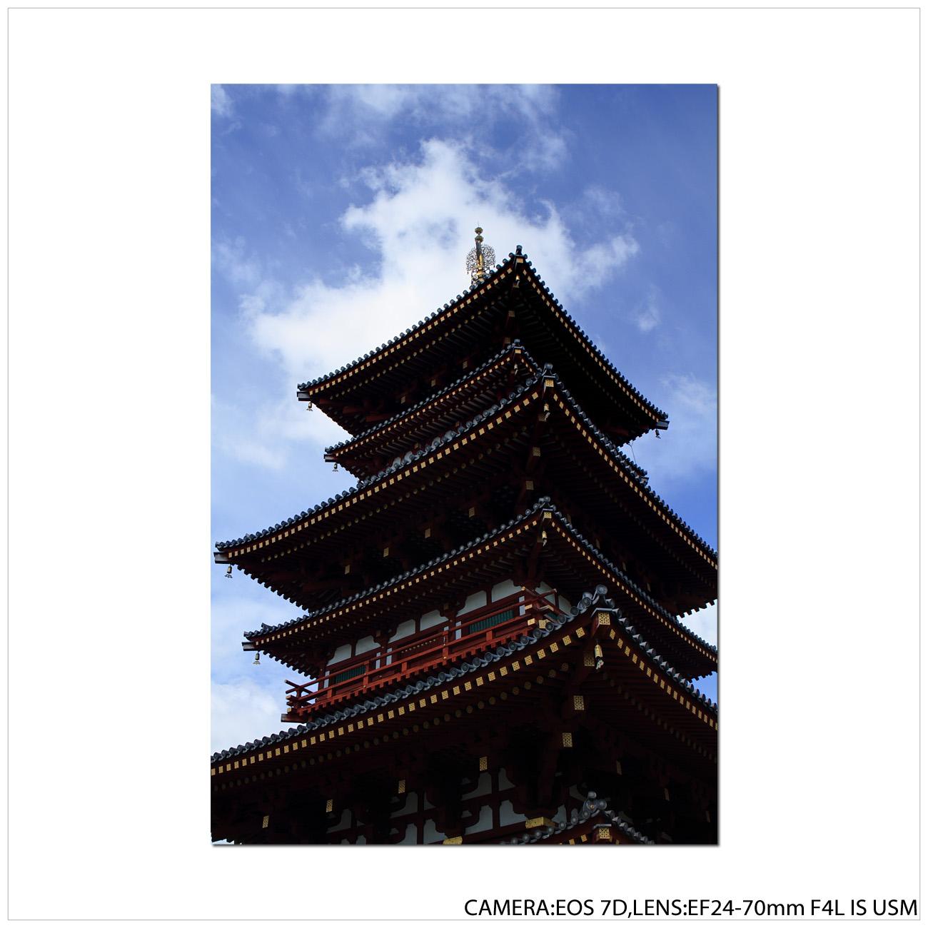 薬師寺にて_e0214724_18395024.jpg