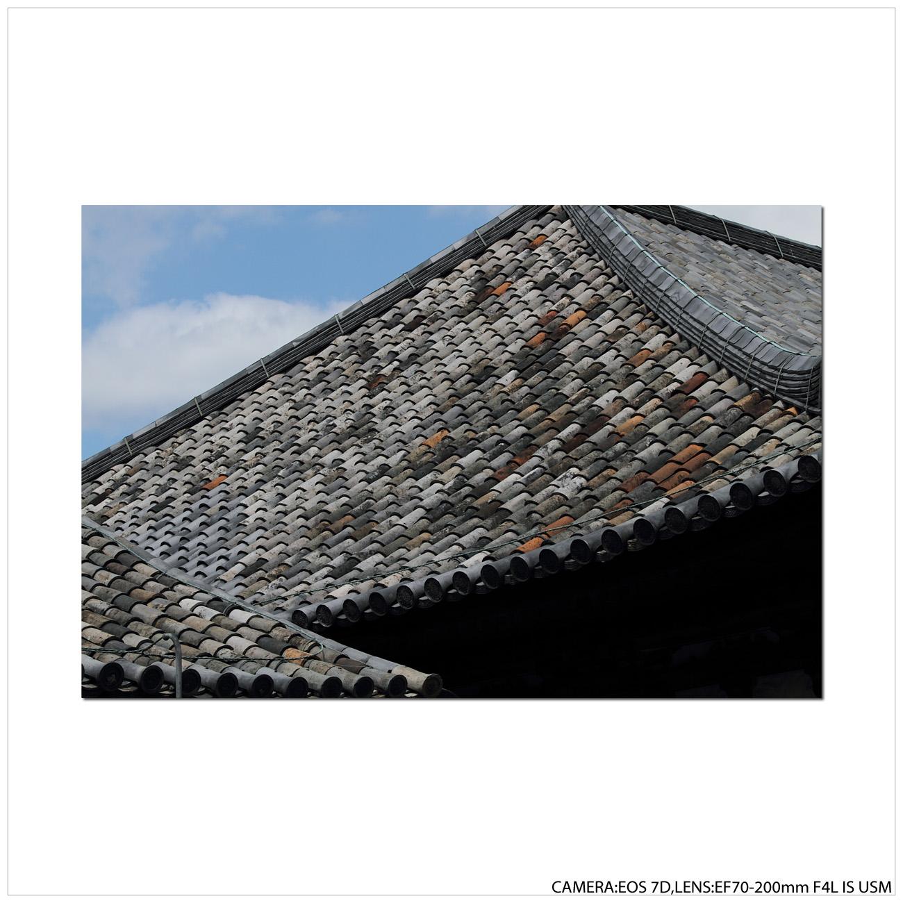 古代瓦~元興寺_e0214724_19132519.jpg