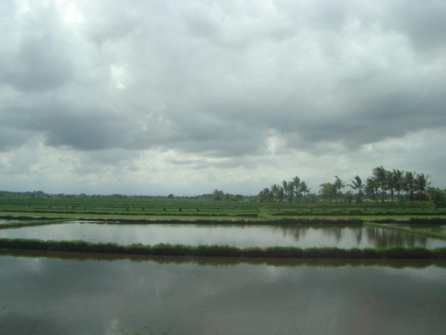 バリ島へ行く。⑥ ~変わりゆく町と変わらない場所~_f0232060_023554.jpg