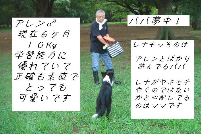 b0101991_1305480.jpg