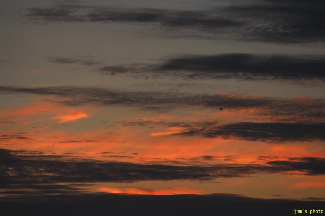 空を見上げる男(カモメは西へ)_a0158797_1113920.jpg