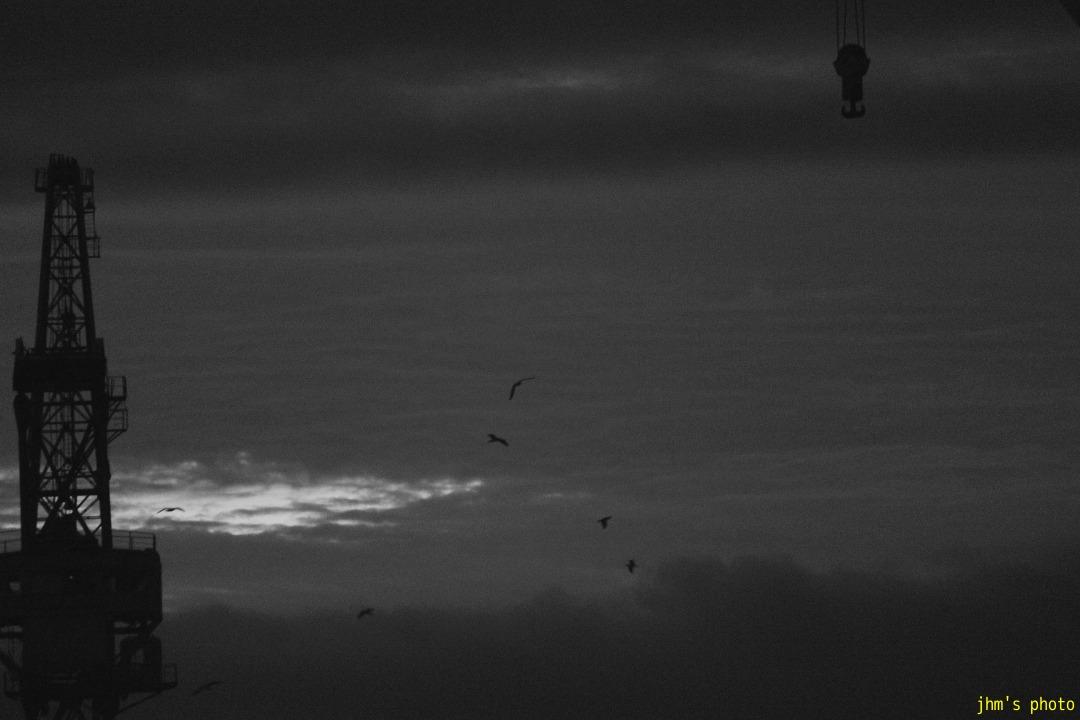 空を見上げる男(カモメは西へ)_a0158797_1291630.jpg
