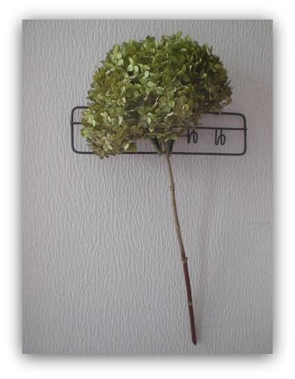 ピンクアナベル茎付紫陽花_c0207719_1781372.jpg