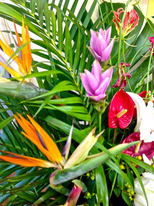 今週のお花とセール情報_a0200423_18562267.jpg