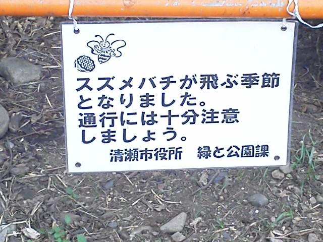 f0028336_038247.jpg