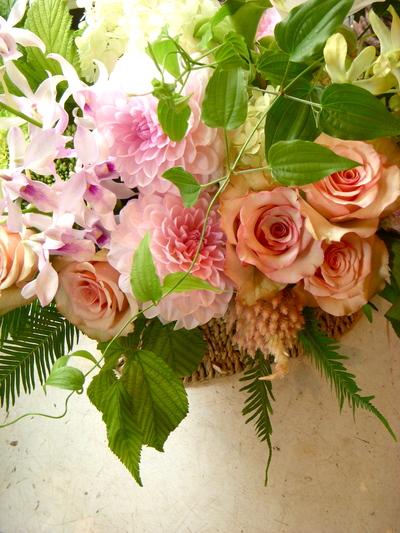桜貝。。。_a0229658_15261387.jpg
