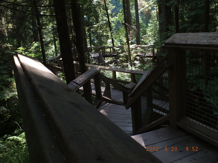 北バンクーバーキャピラノ渓谷公園 Capilano Suspension Bridge Park, North Vancouver_e0140365_2301237.jpg