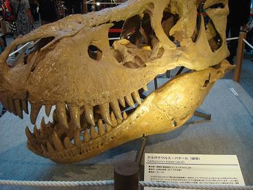 恐竜展 at 丸の内_d0006467_1919151.jpg