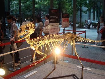 恐竜展 at 丸の内_d0006467_19192585.jpg