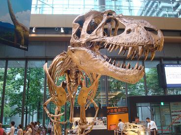 恐竜展 at 丸の内_d0006467_19193443.jpg
