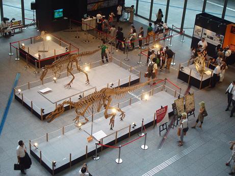 恐竜展 at 丸の内_d0006467_191947.jpg