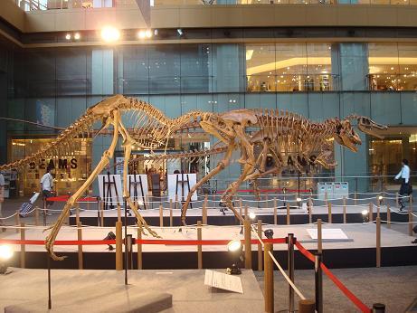 恐竜展 at 丸の内_d0006467_19573316.jpg