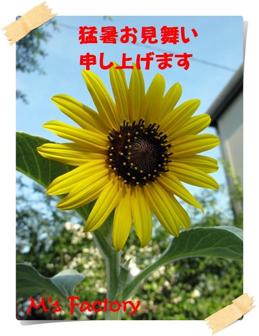 f0129726_227011.jpg