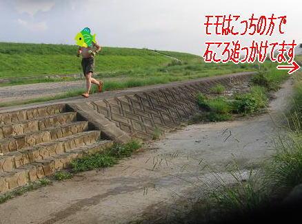 e0125131_20583497.jpg