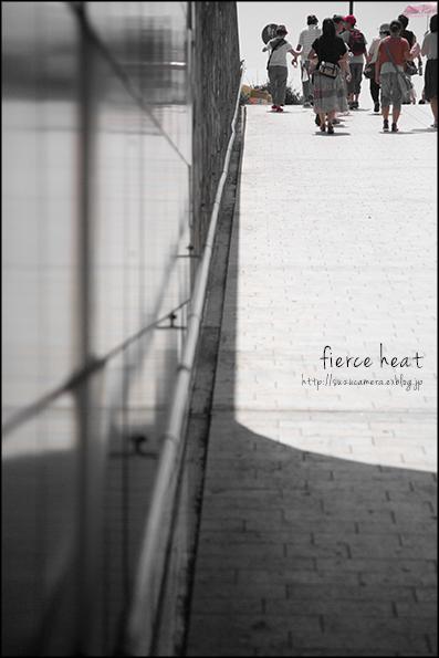 猛暑の残暑_f0100215_21463981.jpg