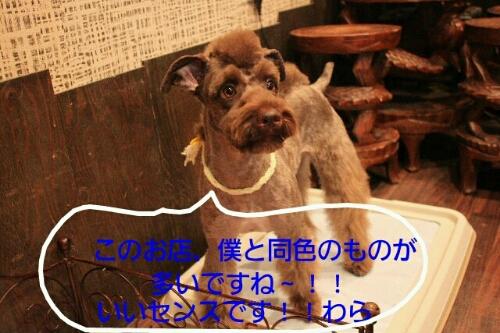 b0130018_2227054.jpg