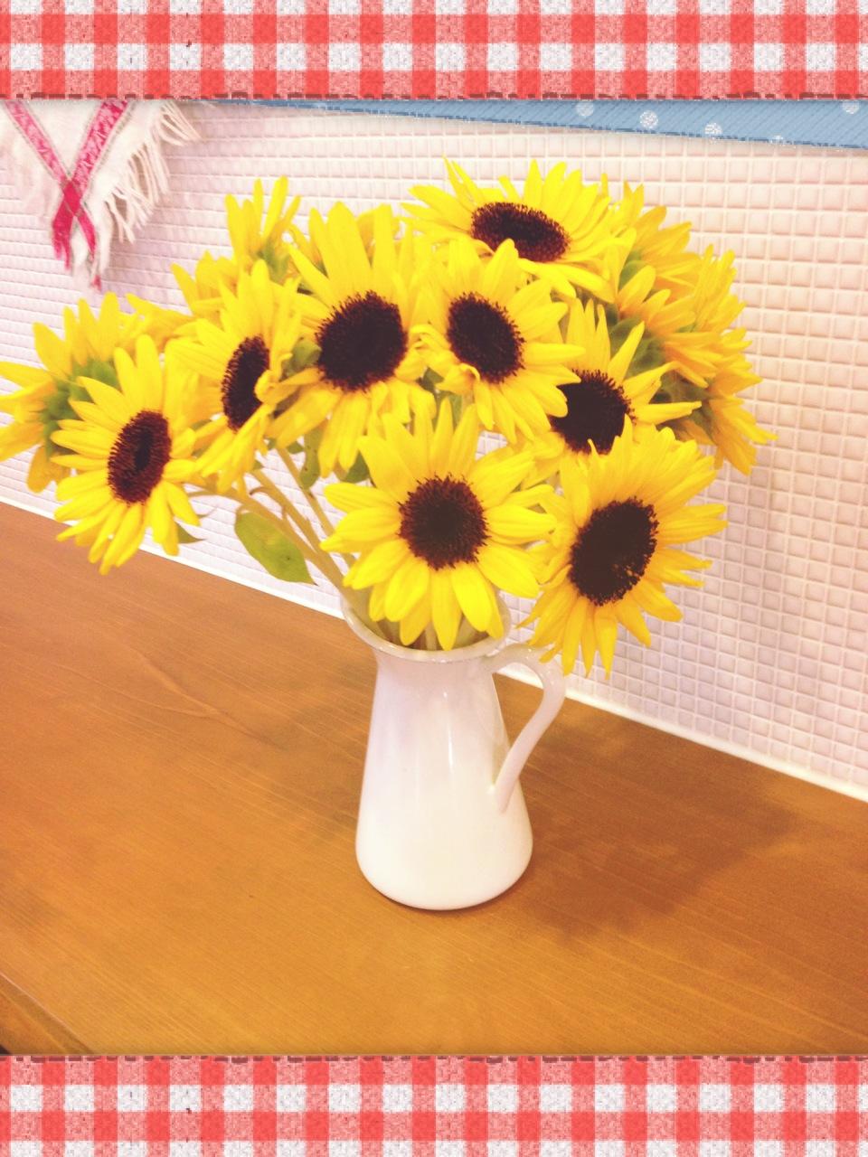 開店花。_d0178587_14175014.jpg