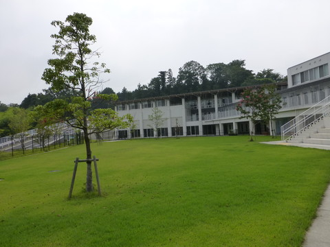 横浜市動物愛護センター訪問_e0237625_22314549.jpg