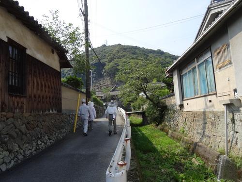 入口谷筋の草刈り  in  孝子の森_c0108460_16524421.jpg