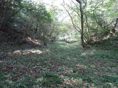 入口谷筋の草刈り  in  孝子の森_c0108460_1711360.jpg