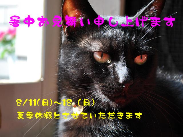 b0029777_2150987.jpg