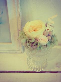 preserved flower_b0209477_17583015.jpg