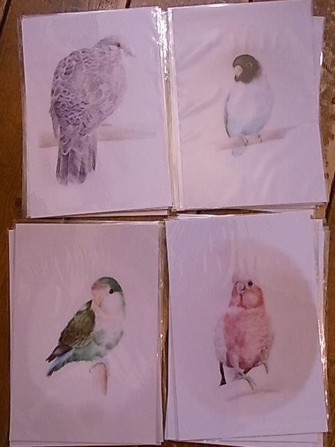 始まりました東急ハンズ梅田店でのインコと鳥の雑貨展_d0322493_7531015.jpg