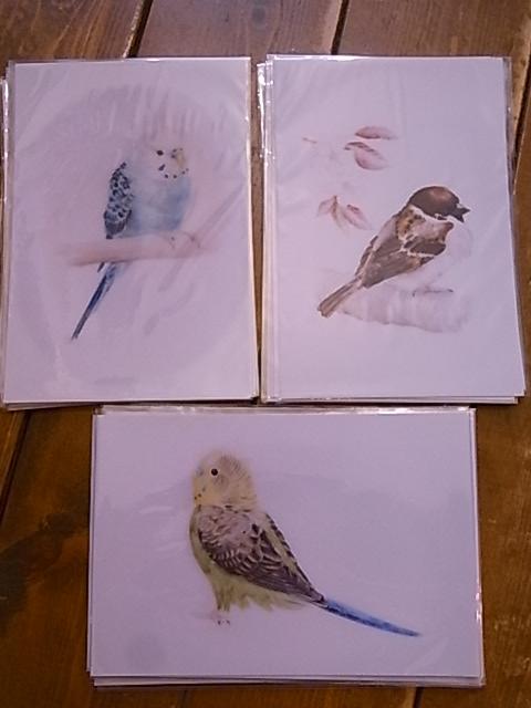 始まりました東急ハンズ梅田店でのインコと鳥の雑貨展_d0322493_7534026.jpg