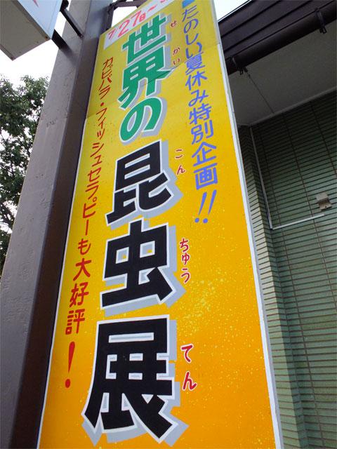 激・闘もろこし_a0179837_1801842.jpg