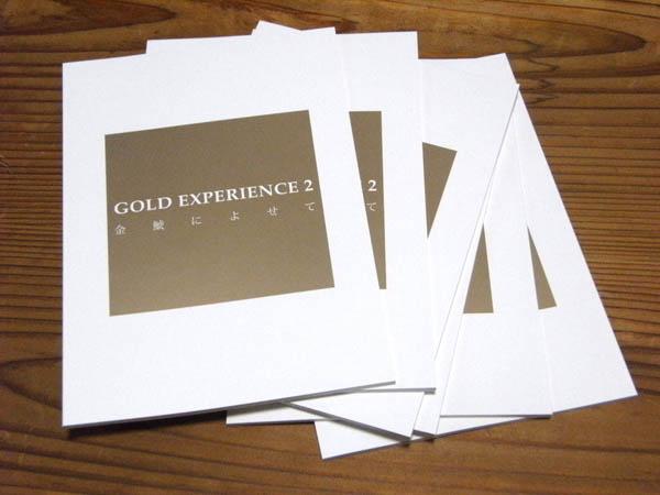 「GOLD EXPERIENCE 2 ~金鯱によせて~」図録完成_a0123573_0572512.jpg