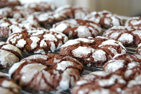 チョコレートクッキー&「ビストロ講習会」日程のお知らせ~_c0122889_1443202.jpg