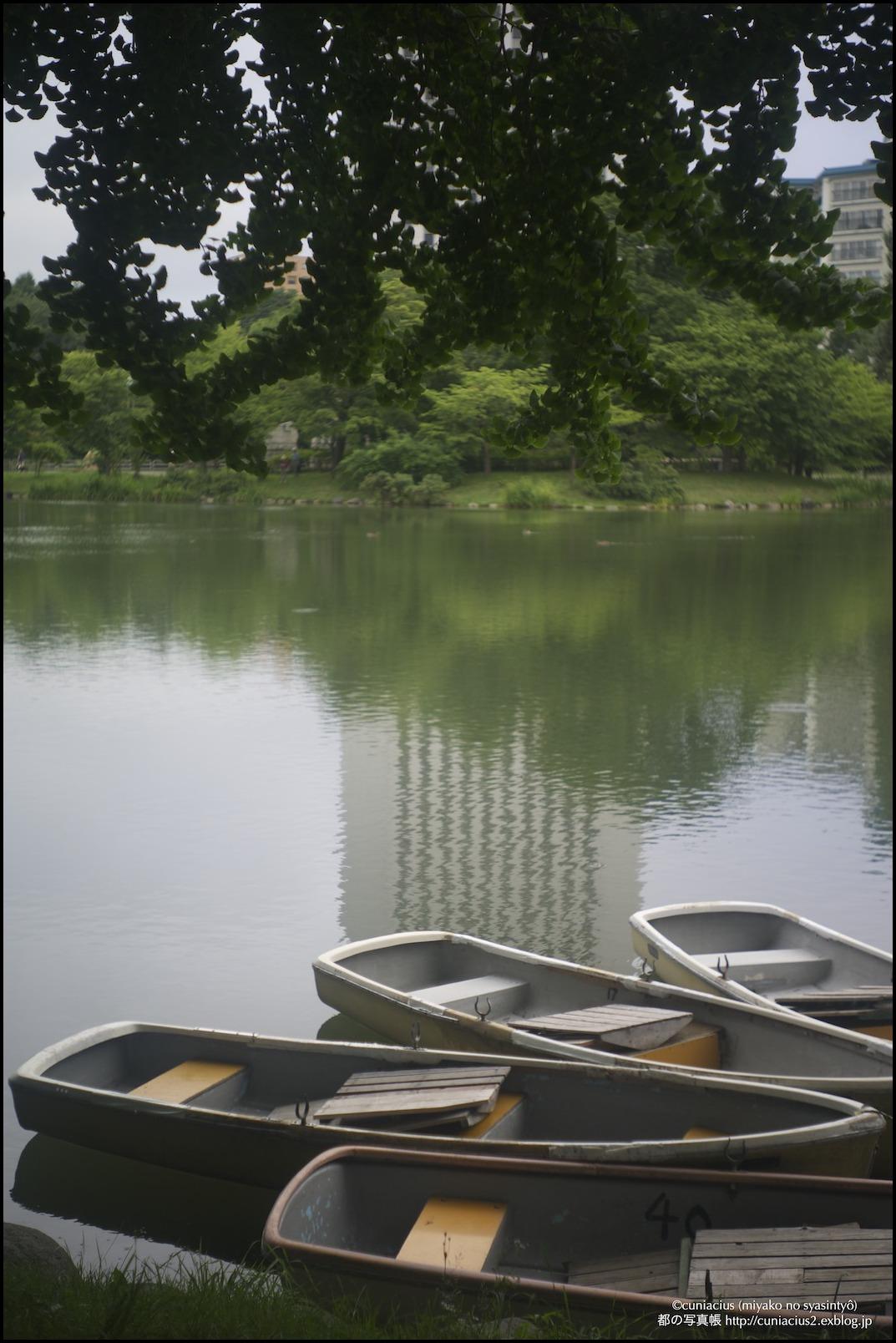 湿度いっぱいの中島公園_f0042194_2265932.jpg