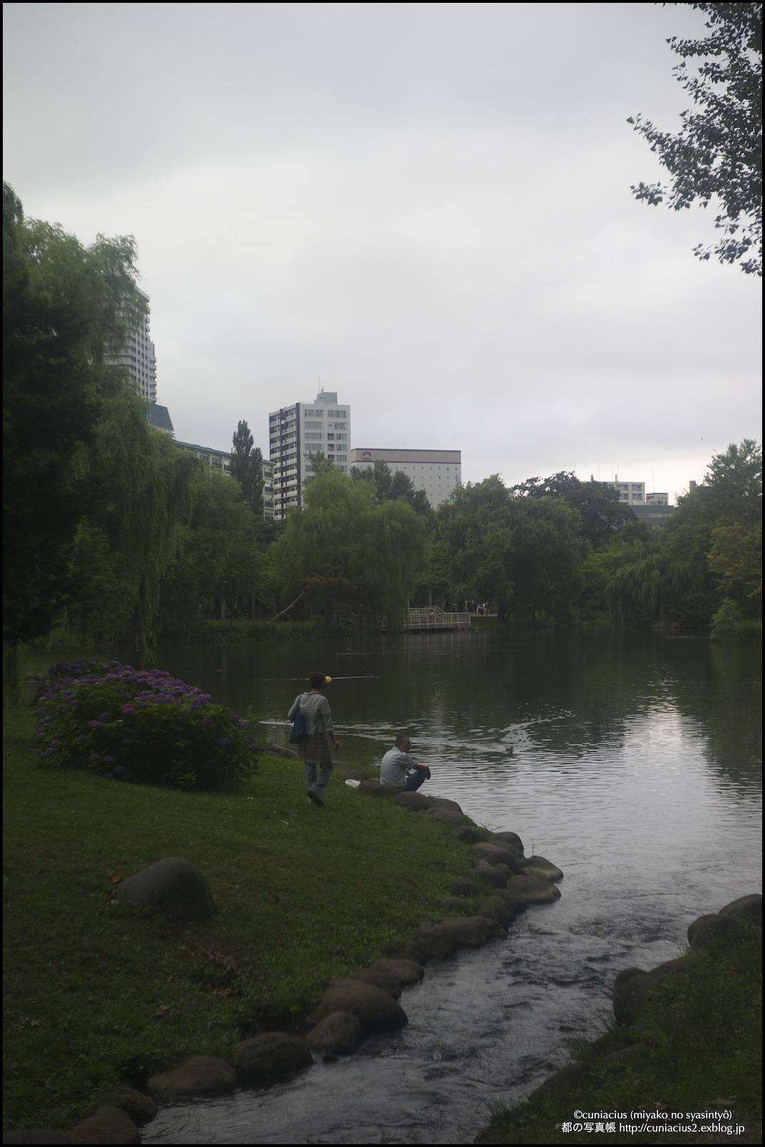 湿度いっぱいの中島公園_f0042194_226693.jpg