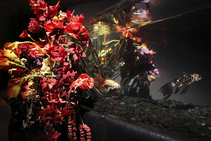 アートアクアリウム展 ~名古屋・金魚の雅~_f0253927_2124254.jpg