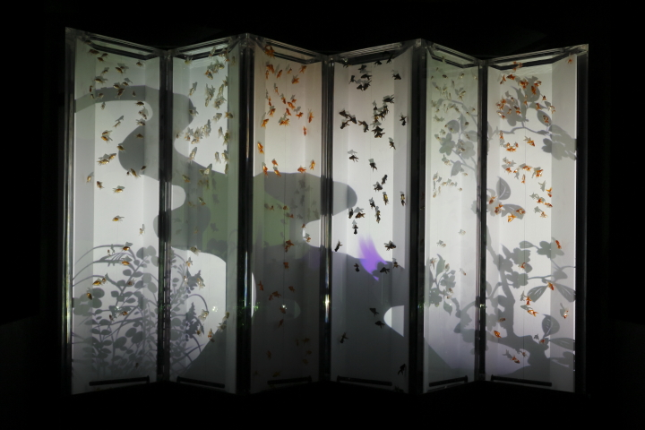 アートアクアリウム展 ~名古屋・金魚の雅~_f0253927_21263647.jpg