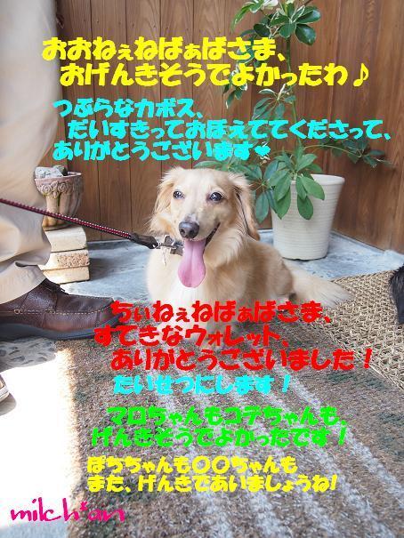 b0115642_952592.jpg
