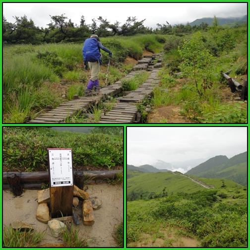 夏山遠征~薬師岳へ_e0164643_22452112.jpg
