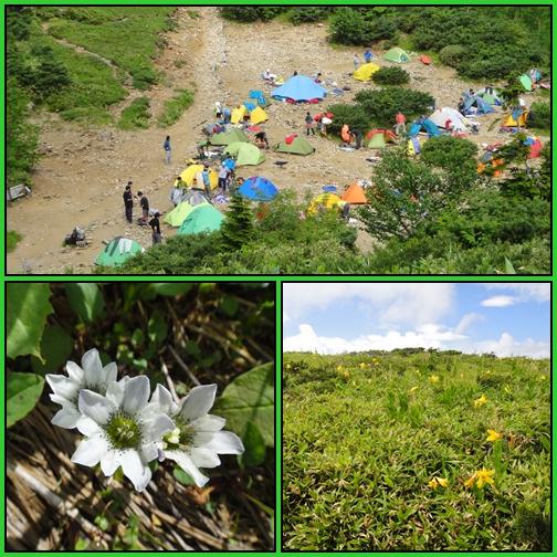 夏山遠征~薬師岳へ_e0164643_23215578.jpg